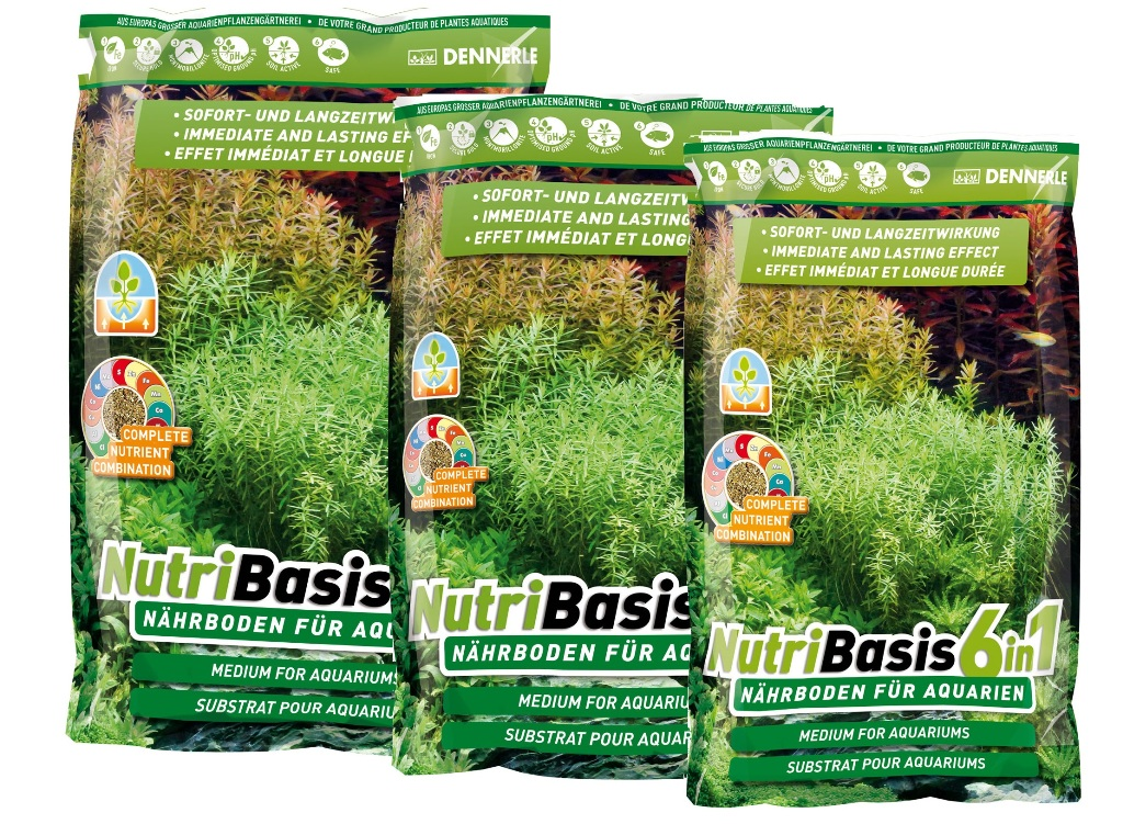 Substrat fertilizant Dennerle NutriBasis 6 in 1 - 2.4kg