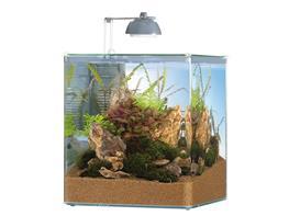 Acvariu nano Eheim aquastyle 35l LED thumbnail