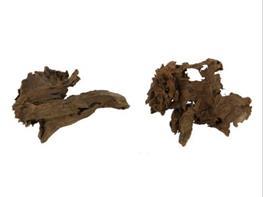 Radacina de mangrove Hobby XS 12-16 cm thumbnail