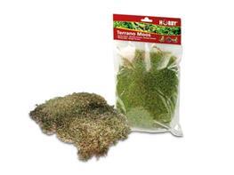 akhatina varicoza cumpăra varicoză lipetsk