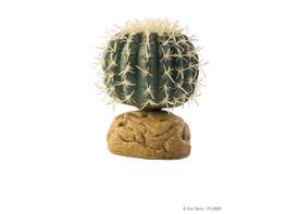 Plante desertice Exo Terra - Barrel Cactus Mic PT2980 thumbnail